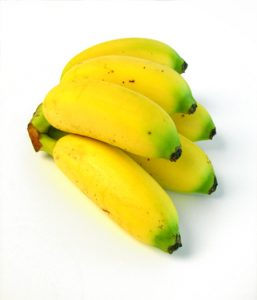 Baby Bananas, Also Called Frog Bananas in the Caribbean